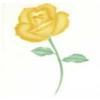 40-WM027 Трафарет для аэрографа «Открытая роза»