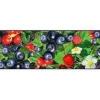 Лента бордюрная «Лесная ягода»